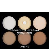 Absolute New York - Teint - Strobing & Shading Highlight & Contour Palette Light To Medium