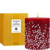 Acqua di Parma - Kerzen - Winter Forest Candle