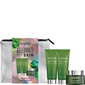 Ahava - Mineral Radiance - Celebrate Your Skin Set