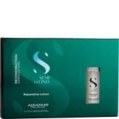 Alfaparf - Skin care - Reconstruction Reparative Lotion