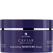 Alterna - Moisture - Replenishing Moisture Masque