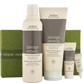 Aveda - Shampoo - A Gift of Stronger Hair