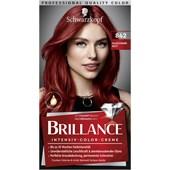Brillance - Coloration - 842 Kaschmirrot Stufe 3 Intensiv-Color-Creme