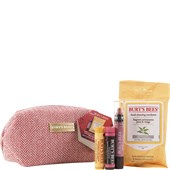 Burt's Bees - Lips - Burt's Beauty Basics Set