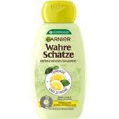 GARNIER - Wahre Schätze - Tonerde & Zitrone Shampoo