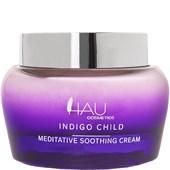 HAU Cosmetics - Gesichtspflege - Day Care Cream