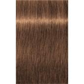 INDOLA - PCC Natural & Essential - No. 8.34 Light Blonde Gold Copper
