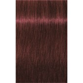 INDOLA - PCC Red & Fashion - 5.66x Hellbraun Extra Rot