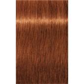 INDOLA - PCC Red & Fashion - 7.44 Mittelblond Kupfer Intensiv