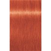INDOLA - PCC Red & Fashion - 9.44 Extra Lichtblond Kupfer Intensiv
