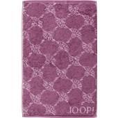 JOOP! - Cornflower - Asciugamano per gli ospiti magnolia