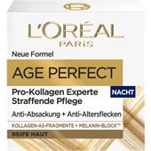 L'Oréal Paris - Age Perfect - Age Perfect Pro Collagen Expert Firming Night Cream