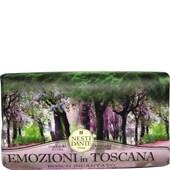 Nesti Dante Firenze - Emozione in Toscana - Bosco Incantato Soap