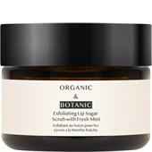 Organic & Botanic - Augen- & Lippenpflege - Super Soft Lip Scrub