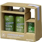 Paul Mitchell - Tea Tree Lavender Mint - The Art of Relaxation - Lavender Mint Gift Set