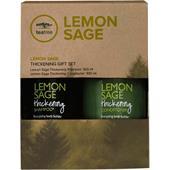 Paul Mitchell - Tea Tree Lemon Sage - Thickening Gift Set