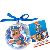 Paw Patrol - Kinderdrogerie - Pawmazing Surprise