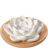 Primavera - Duftsteine - Aroma Duftstein Lotusblüte