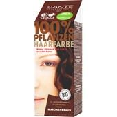 Sante Naturkosmetik - Coloration - Natural Plant Hair Color