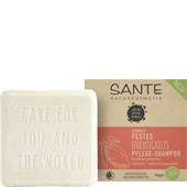 Sante Naturkosmetik - Shampoo - Festes Feuchtigkeits Pflege-Shampoo Bio-Mango & Aloe Vera