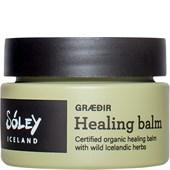 Sóley Organics - Körpercremes - Graedir Healing Balm