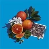 Atelier Cologne - Raumdüfte - Orange Positano Bougie