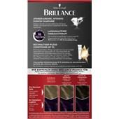 Brillance - Coloration - 703 Dunkler Amethyst Stufe 3 Intensiv-Color-Creme