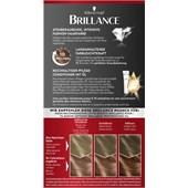 Brillance - Coloration - 822 Kupfergold Stufe 3 Intensiv-Color-Creme