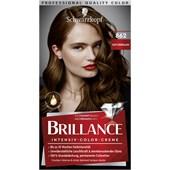 Brillance - Coloration - 862 Naturbraun Stufe 3 Intensiv-Color-Creme