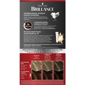 Brillance - Coloration - 874 Samtbraun Stufe 3 Intensiv-Color-Creme