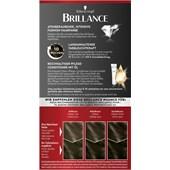 Brillance - Coloration - 885 Trüffelbraun Stufe 3 Intensiv-Color-Creme