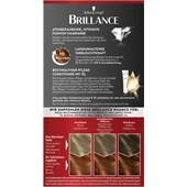 Brillance - Coloration - 921 Kupferrot Stufe 3 Intensiv-Color-Creme