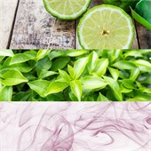 Calvin Klein - ck one - Eau de Toilette Spray
