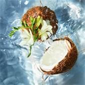 GUERLAIN - Aqua Allegoria - Coconut Eau de Toilette Spray