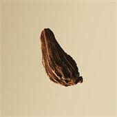 Hugo Boss - Boss Bottled - Eau de Parfum Spray