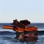 Hugo Boss - BOSS Bottled Infinite - Eau de Parfum Spray