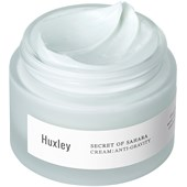 Huxley - Antioxidant Routine - Cream; Anti-Gravity