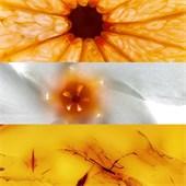 Jil Sander - Sun - Body Lotion