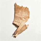 Jil Sander - Sun Men - New Sun Le Parfum