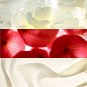 Jil Sander - Sunlight - Rich Body Cream