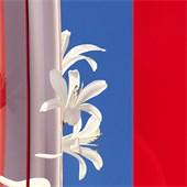 KENZO - FLOWER BY KENZO - Eau de Vie Eau de Parfum Spray Légère