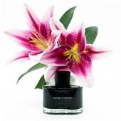 Mark Buxton Perfumes  - Black Collection - Message In a Perfume Eau de Parfum Spray