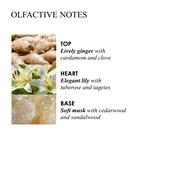 Molton Brown - Bath Oils & Salts - Heavenly Gingerlily Caressing Bathing Oil