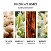 Molton Brown - Kerzen - Gingerlily Three Wick Candle