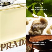 Prada - Prada Amber - Eau de Parfum Spray