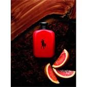 Ralph Lauren - Polo Red - Eau de Toilette Spray