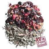 Shuyao - Früchtetee - Dose + Refill Tea Fruit Delight