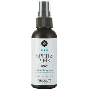 Absolute New York - Hudton - Spritz 2 Fix Dewy