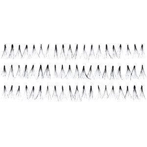 Absolute New York - Eyelashes - Fabulashes Knot Free Ultra Black AEL 60