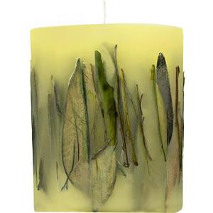 Acqua di Parma - Candles - Oolong Tea Leaves Fruit & Flower Candle